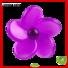 Quality JEBSEN ARTS Brand flower vent clip air freshener
